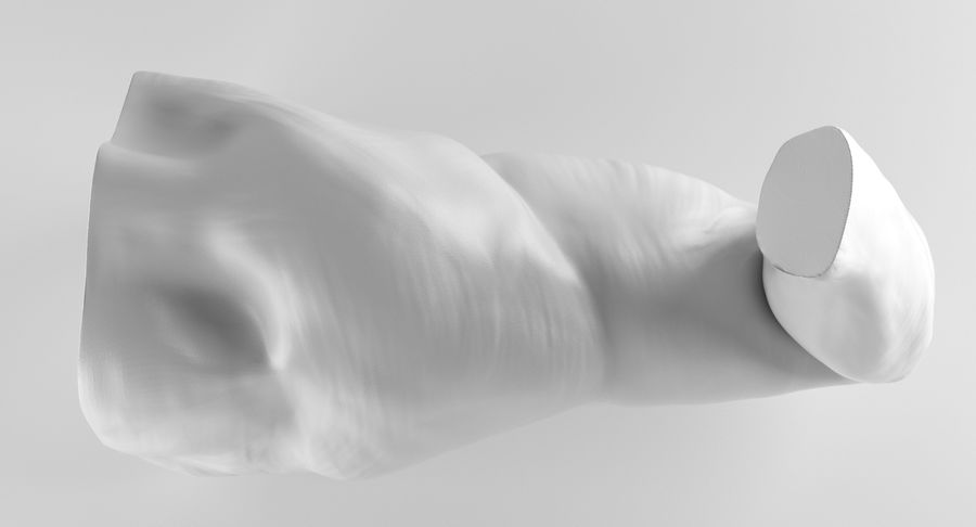 Anatomía del brazo royalty-free modelo 3d - Preview no. 13