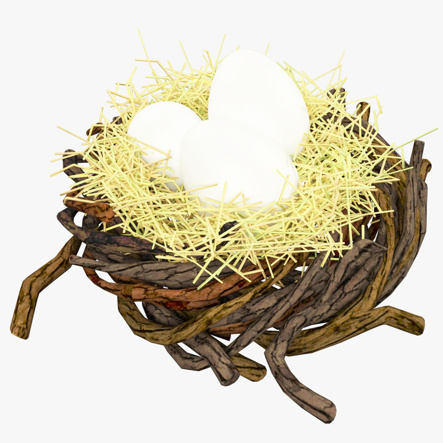 Nest With Eggs royalty-free 3d model - Preview no. 6