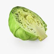 Cabbage Half 3D Model 3d model