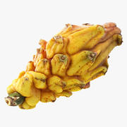 Yellow Dragonfruit 3D模型 3d model