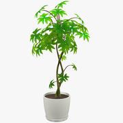 Beyaz tencerede ağaç 3d model
