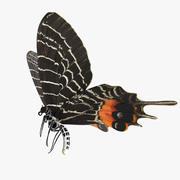 Bhutanitis Lidderdalii ou papillon de la gloire du Bhoutan 3d model
