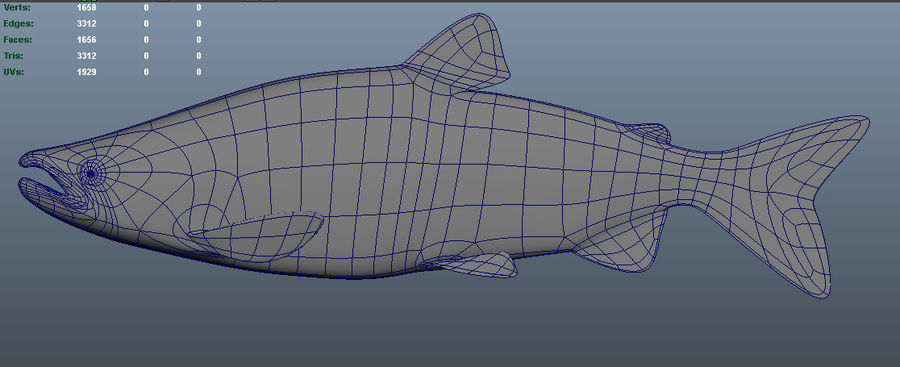 salmone royalty-free 3d model - Preview no. 5