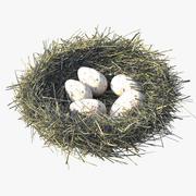 鳥の巣 3d model