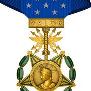 Air Force Medal of Honor 3d model