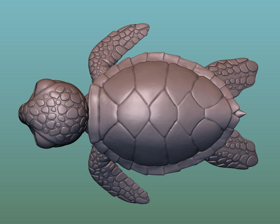 海龟(绿海龟(可进行3D打印)) royalty-free 3d model - Preview no. 6