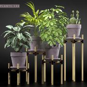 rośliny 106 3d model