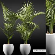 식물 110 3d model