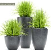 plantas de grama 111 3d model