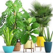 Rośliny zbierające (1) (1) 3d model