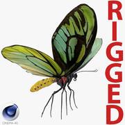 Queen Alexandras Birdwing Butterfly Rigged för Cinema 4D 3d model