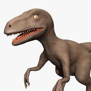 Raptor (Rigged) 3d model