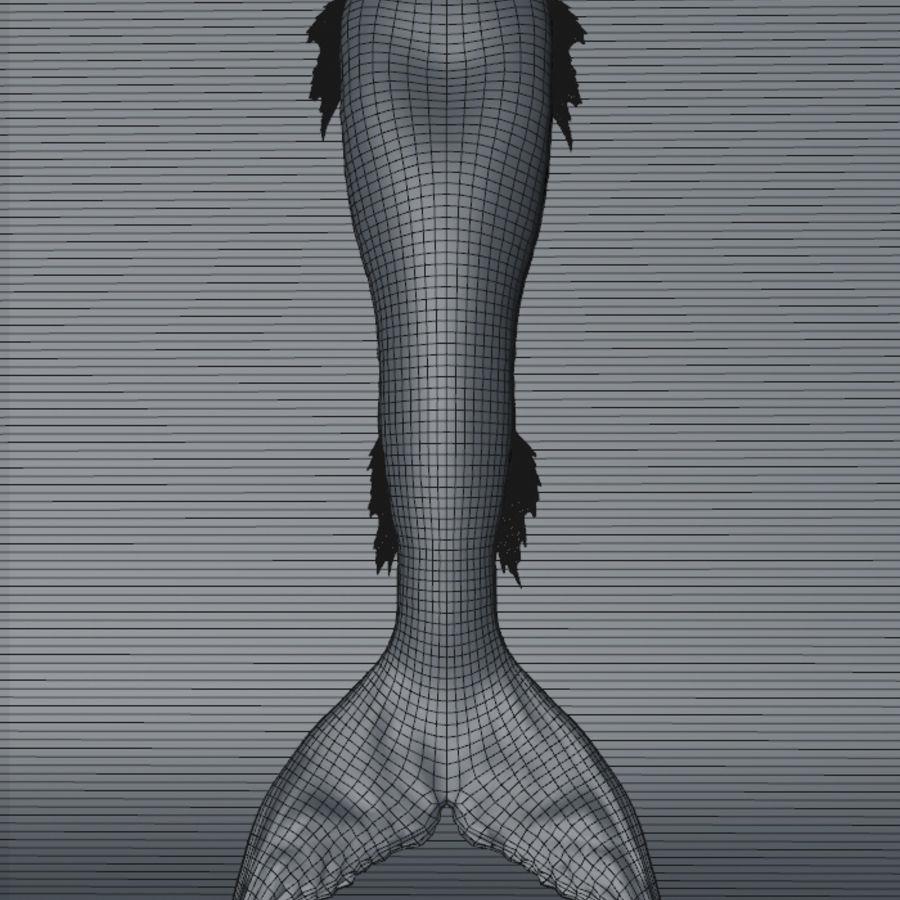 Queue de sirène réaliste royalty-free 3d model - Preview no. 9