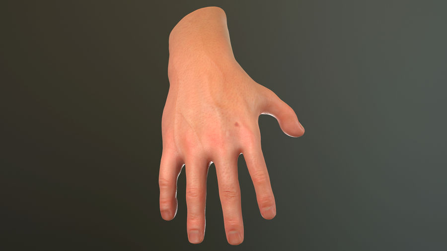 Male Hand PBR Rigged royalty-free 3d model - Preview no. 8