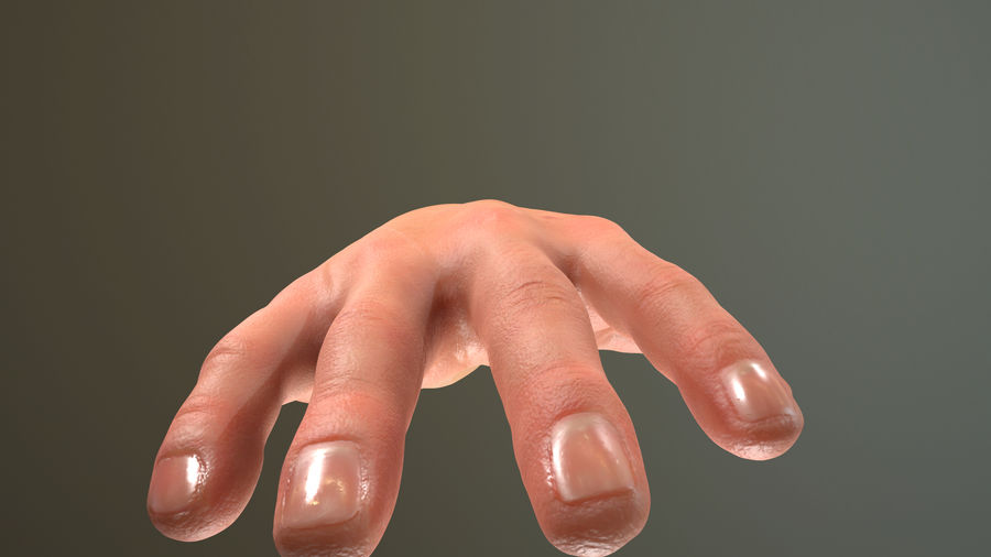 Male Hand PBR Rigged royalty-free 3d model - Preview no. 12