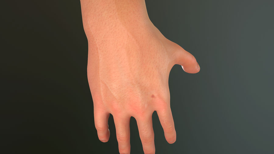 Male Hand PBR Rigged royalty-free 3d model - Preview no. 10