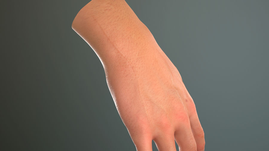 Male Hand PBR Rigged royalty-free 3d model - Preview no. 24