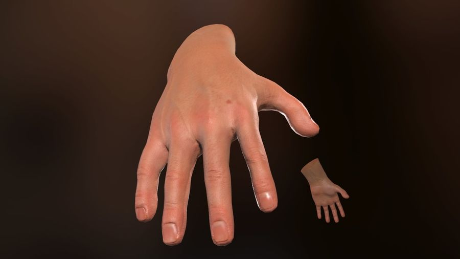 Male Hand PBR Rigged royalty-free 3d model - Preview no. 5