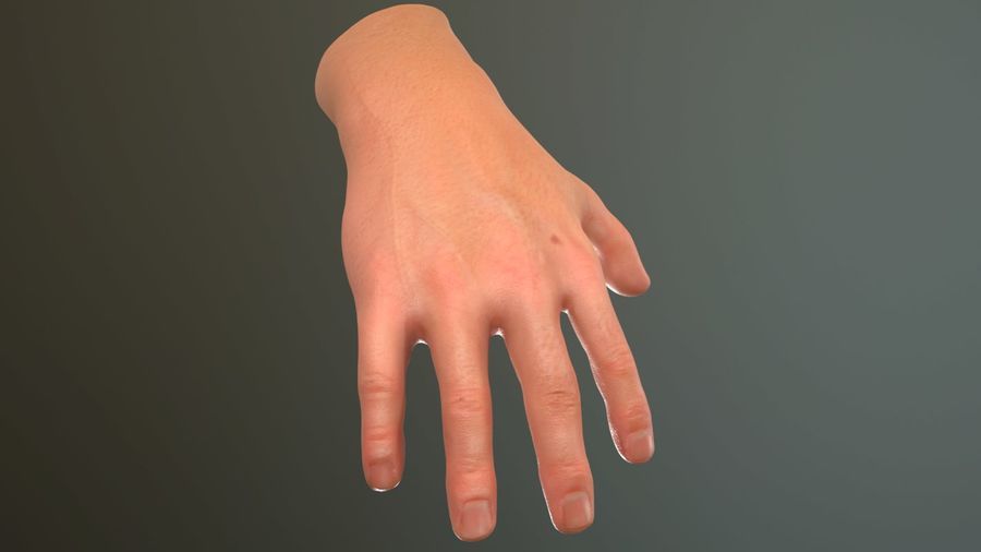 Male Hand PBR Rigged royalty-free 3d model - Preview no. 7