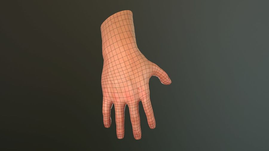Male Hand PBR Rigged royalty-free 3d model - Preview no. 33