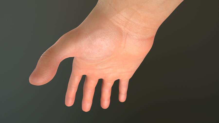 Male Hand PBR Rigged royalty-free 3d model - Preview no. 18