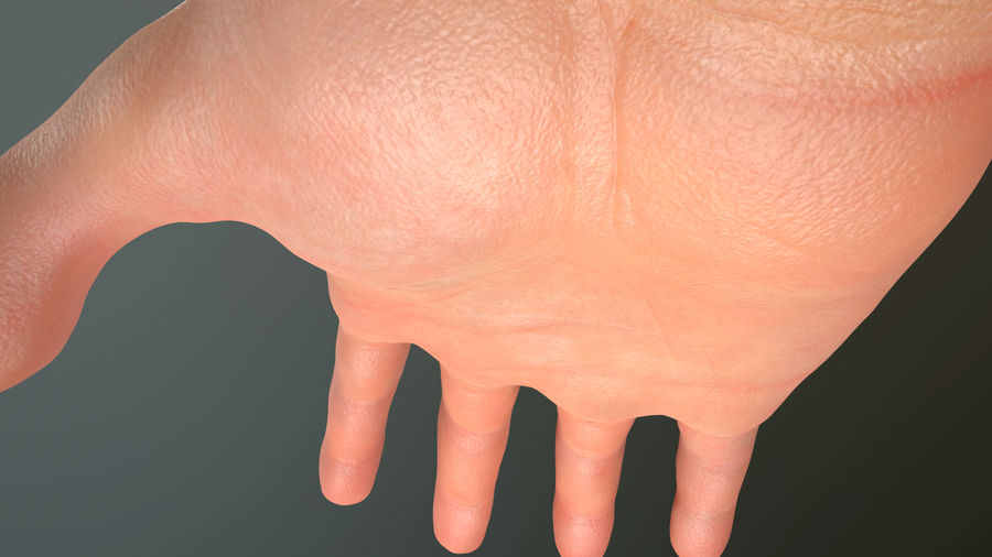 Male Hand PBR Rigged royalty-free 3d model - Preview no. 20