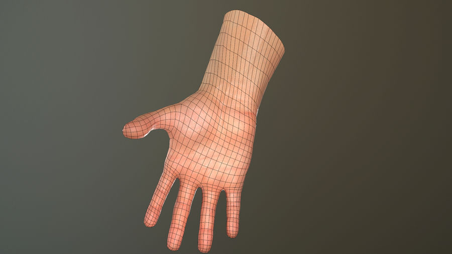 Male Hand PBR Rigged royalty-free 3d model - Preview no. 35