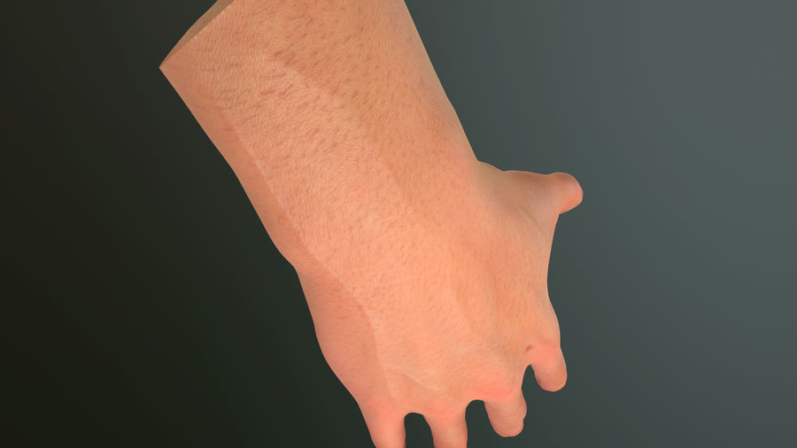 Male Hand PBR Rigged royalty-free 3d model - Preview no. 25