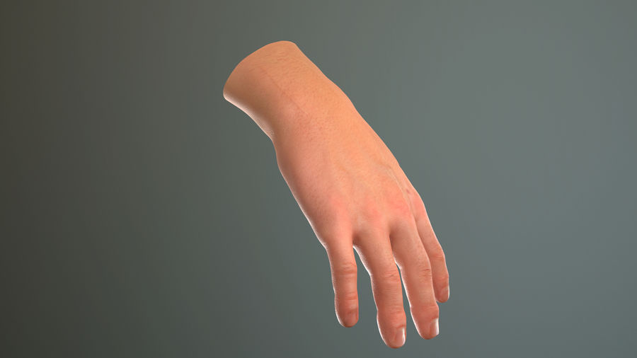Male Hand PBR Rigged royalty-free 3d model - Preview no. 31
