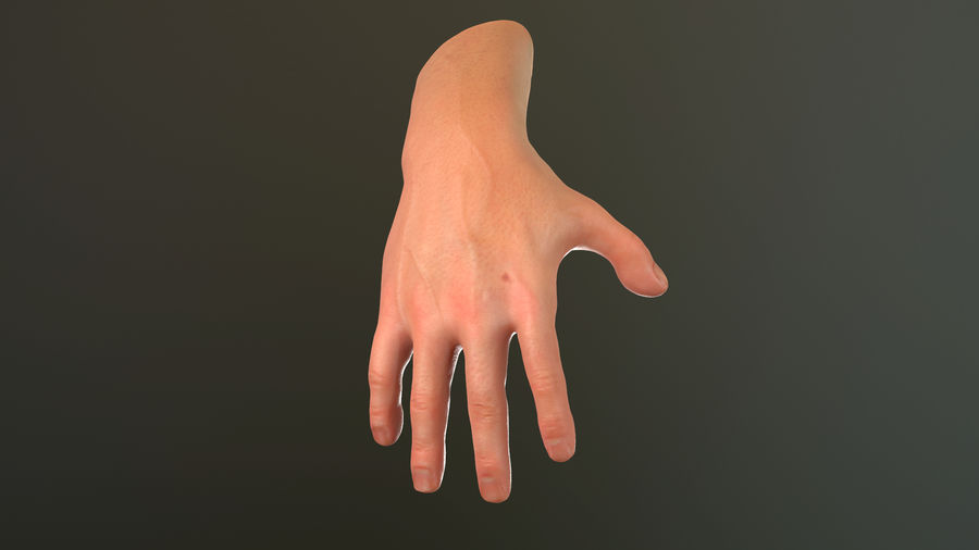 Male Hand PBR Rigged royalty-free 3d model - Preview no. 28