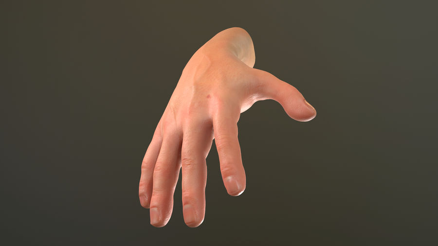 Male Hand PBR Rigged royalty-free 3d model - Preview no. 3
