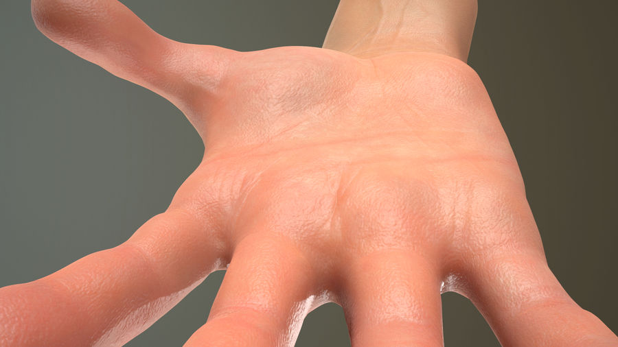 Male Hand PBR Rigged royalty-free 3d model - Preview no. 19