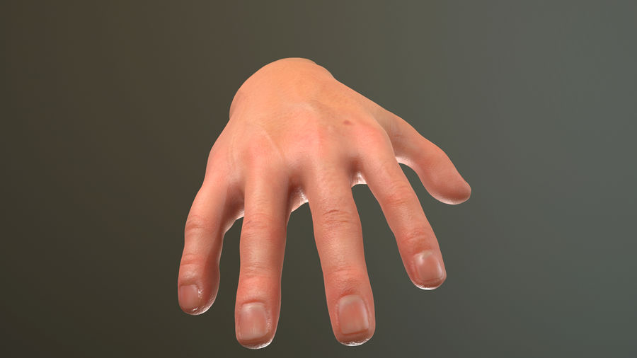 Male Hand PBR Rigged royalty-free 3d model - Preview no. 9