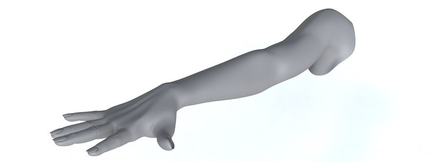 Arm right royalty-free 3d model - Preview no. 10