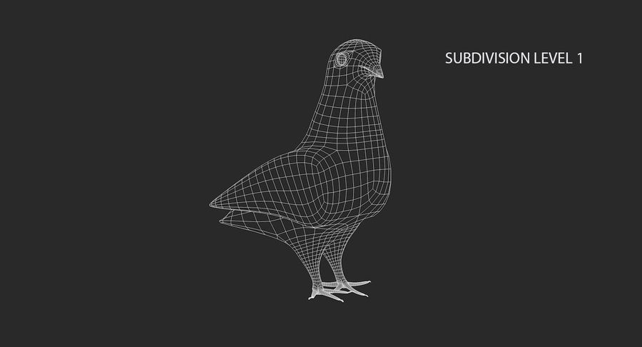 Pigeon royalty-free 3d model - Preview no. 15