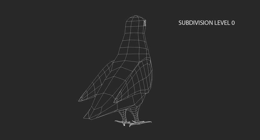 Pigeon royalty-free 3d model - Preview no. 16