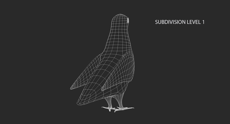 Pigeon royalty-free 3d model - Preview no. 17