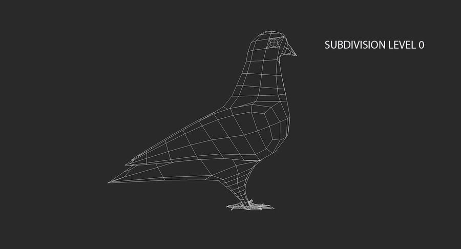 Pigeon royalty-free 3d model - Preview no. 12