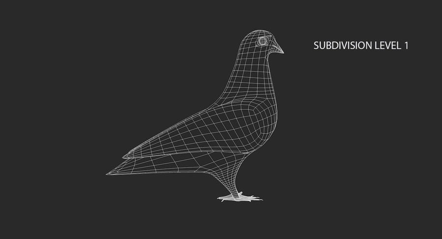 Pigeon royalty-free 3d model - Preview no. 13