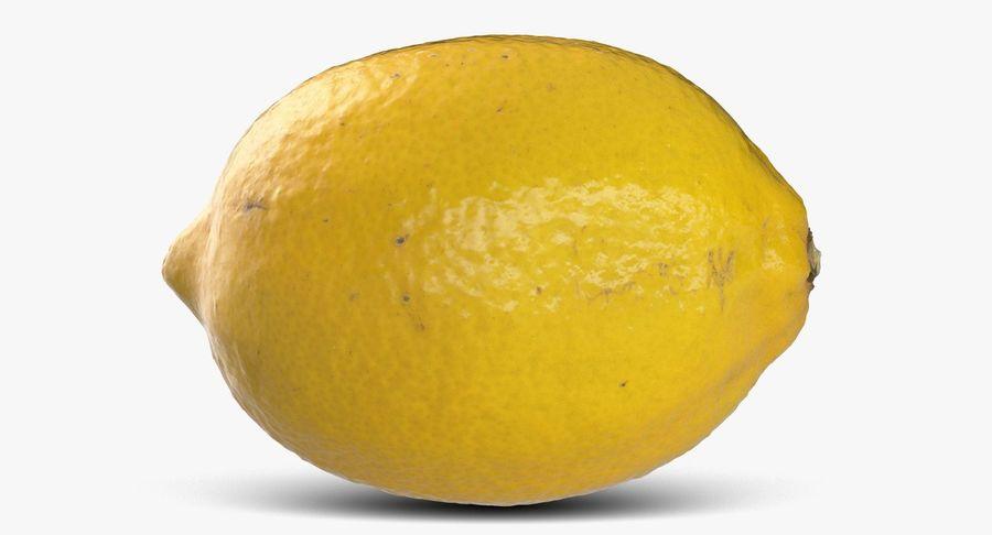 Lemon Fruit royalty-free 3d model - Preview no. 6