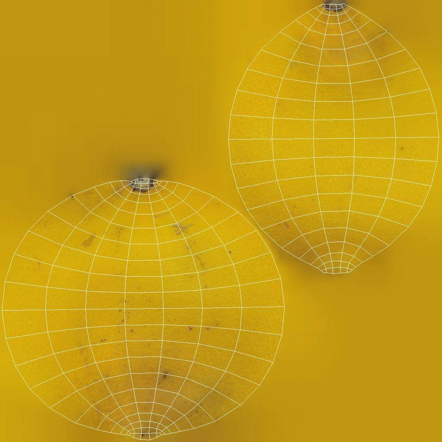 Lemon Fruit royalty-free 3d model - Preview no. 10
