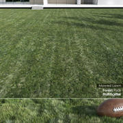 Mowed Lawn Grass 3d model