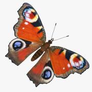 Aglais io lub European Peacock Butterfly 3d model