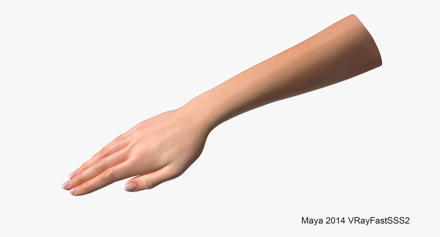 Female Arm A (Pose C Textured) royalty-free 3d model - Preview no. 9