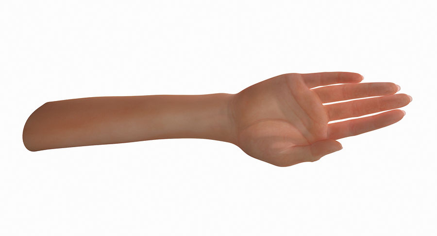 Female Arm A (Pose C Textured) royalty-free 3d model - Preview no. 25
