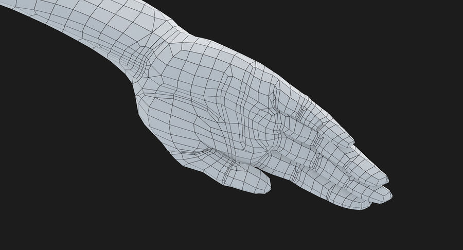 Female Arm A (Pose C Textured) royalty-free 3d model - Preview no. 40