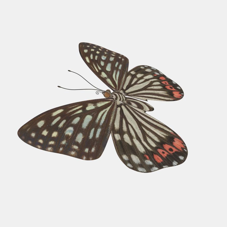 la farfalla royalty-free 3d model - Preview no. 5