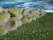 Moos auf den Felsen 3d model