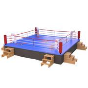 Boxnings ring 3d model