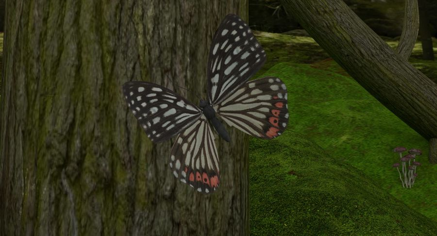 fantasy-forest royalty-free 3d model - Preview no. 8